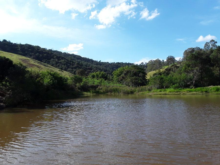 Fragmento de mata nativa do Bioma Mata Atlântica que recebe o PSA de Jundiaí localizada no Bairro da Roseira